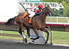 Eight Enter Arlington-Washington Futurity