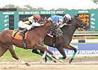 Musket Man Fires in Super Stakes at Tampa Bay