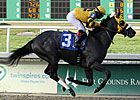 Mylute Posts Dandy Work at Churchill Downs