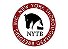 NYTB Online Seasons Auction Set for January