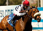 Wilshire: American Oaks Winner Nereid Returns