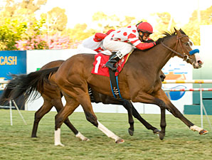 Neversaidiwassweet Spices Up Miesque in Win