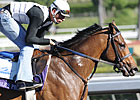 Several Notable 3YOs Work in Florida