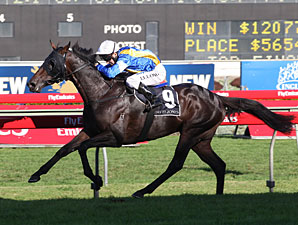 New Zealand-Breds Score in Aussie Derby
