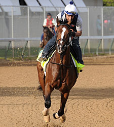 Normandy Invasion Runs Off in Morning Gallop