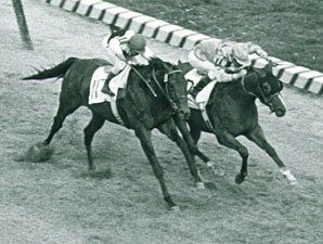 Northern Dancer on display at Woodbine