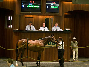 Smart Strike Colt Sells for $400,000 at OBS