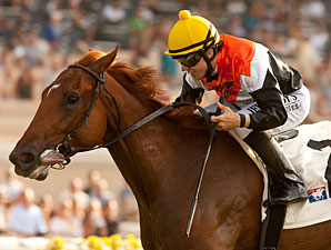 Del Mar Derby Lures Deep Field of 11