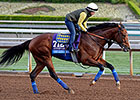 Baffert Hopes Luck Turns With One Lucky Dane