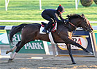 Orb Works Sharp Half-Mile for Preakness