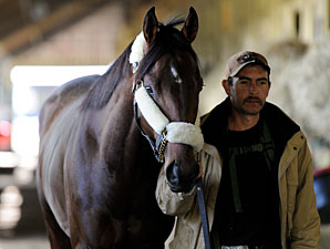 Orb Returns to Training at Belmont Park