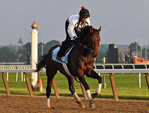 Derby Winner Orb Progresses at Fair Hill