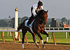Belmont Preview: No Longer Afraid of Orb