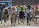 Haskin: No Stopping 2013 Triple Crown Heroes