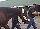 Kentucky Derby Winner Orb Leaves Churchill