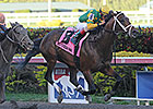 Westchester: Palace Malice Preps for Met Mile