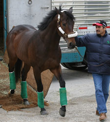 Papa Clem Arrives at Churchill Downs