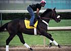 Papa Clem Turns in Final Preakness Drill