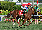 Parranda Continues Winning Ways at Gulfstream