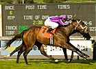 Passion Tops Miss Preakness