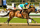 Paynter to Make Next Start in Illinois Derby