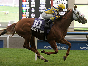 Pender Harbour One to Beat in Dominion Day