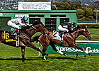 Pepper Crown Gets First Stakes Win in SF Mile