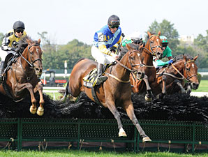 48-1 Shot Takes Lonesome Glory Steeplechase