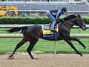 Pioneerof the Nile Zips in Churchill Workout