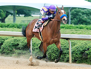 Plum Pretty Consigned to Keeneland November