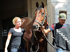 Point of Entry Works Toward 2013 Debut
