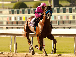 Power Broker Gets First Win in FrontRunner