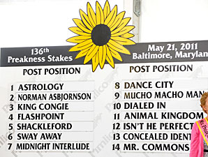 Animal Kingdom Draws Post 11 for Preakness