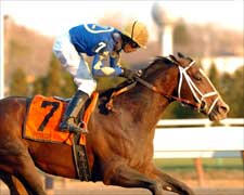 Pletcher, Purge Continue Surge in Cigar Mile