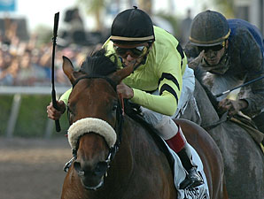Quality Road Treated, Jerkens Optimistic