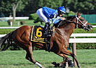 Godolphin Racing's Champion Questing Retired