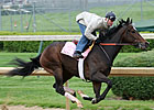 Oaks: Rachel Alexandra Zips Through Work