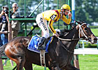 Visit With Rachel Alexandra to be Auctioned