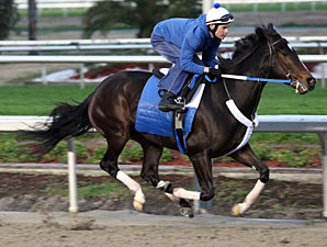 Rachel Alexandra in 4F Move at Fair Grounds