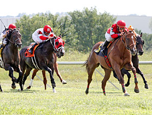 KY Turf Cup: Rahystrada Makes Title Defense