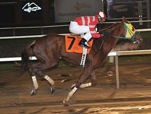 Rapid Redux Claims North American Record