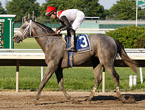 Graded Winners Populate Penn National Stakes