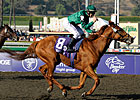 Breeders' Cup Winners on Cartier List