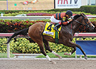 Ready for Rye Looms in Bay Shore Stakes