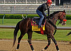 Recapturetheglory Headed to Preakness