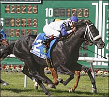 Grade I Winner Request for Parole Retired
