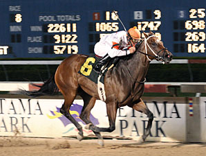 Most Averages Up at Scaled-Down Retama Meet