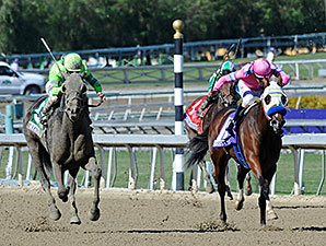 Ria Antonia Placed First in Juvenile Fillies