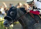 River's Prayer Answers Polytrack Issue in 'Bernardo