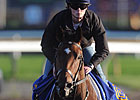 Trainer Costigan Trying for Queen's Plate
